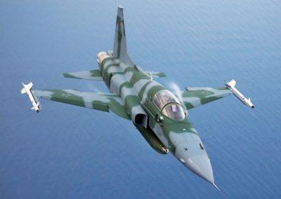 g_plugdados-galeria-aeronaves-northrop-grumman-f-5-tiger